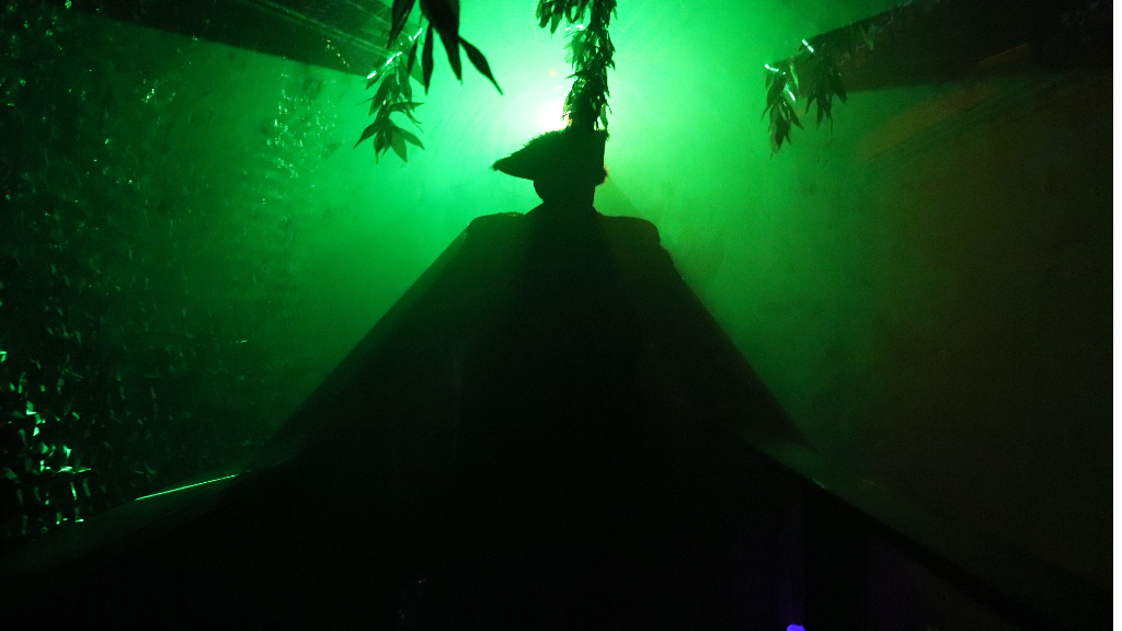 Orange County Home Haunt, THE PIRATE'S CAVE, Opening October 23
